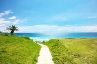 静岡県 下田市 白浜海岸へ続く小道