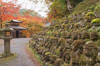 京都 嵯峨野 愛宕念仏寺
