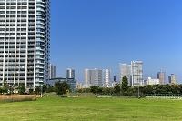 東京都 新豊洲の高層マンションと東雲周辺のビル群