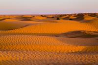 チュニジア クサール・ギレン サハラ砂漠