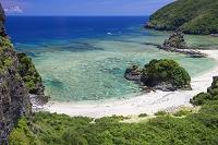 沖縄県 座間味島 海岸植生とニタの浜と裾礁