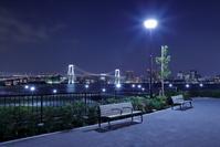 東京都 豊洲ぐるり公園からレインボーブリッジの夜景