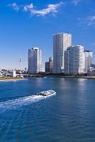 東京都 豊洲高層ビル群 東京スカイツリー