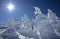 山形県 樹氷原と太陽