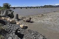 大井川下流 台風で増水(岸辺を守る波消しブロック)