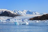 アルゼンチン ウプサラ氷河