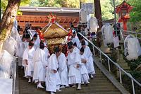 大阪府 枚岡神社 秋郷祭 神幸祭 神輿渡御