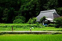 田園風景と子ども