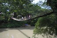 フィリピン ボホール島 吊橋(ハンギングブリッジ)