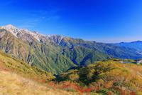 長野県 紅葉の八方尾根より八方池と白馬三山