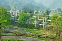 新潟県 権現岳山麓の雪崩防護柵