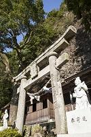 大分県 天念寺 鳥居と講堂