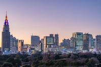 東京都 新宿ビル群マジックアワー