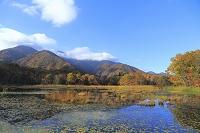 福島県 南会津郡 観音沼森林公園