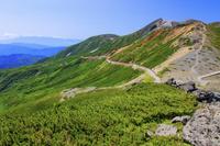 大黒岳より恵比寿岳と乗鞍エコーライン