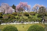 山形県 月岡公園
