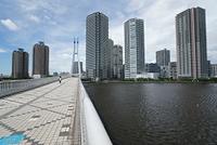 東京 辰巳から見た東雲の高層マンション群