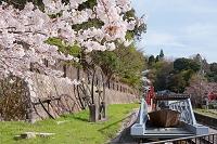 春のインクライン台車と大滑車 蹴上 洛東 京都