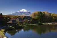 山梨県 紅葉の忍野より富士山
