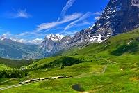 スイス  アルプスの登山電車