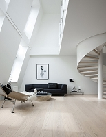 デンマーク モダンハウスの内観