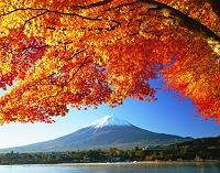 山梨県 河口湖より富士山