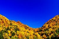 北海道 紅葉鮮やかな山並み