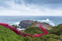 元乃隅稲成神社の赤い鳥居と日本海