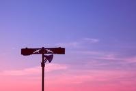 黄昏の空と二羽のカモメの街灯