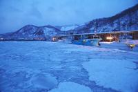北海道 羅臼港のスケソウ船と朝の流氷
