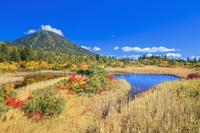 青森県 秋の八甲田山と睡蓮沼