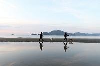 海辺を散歩する子供と犬