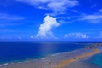 南海の入道雲