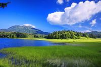 福島県 緑の尾瀬沼より燧ヶ岳 尾瀬