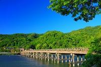 京都府 嵐山 初夏の渡月橋
