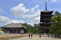 奈良県 興福寺東金堂と五重塔(ともに国宝)