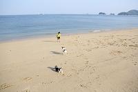 砂浜で遊ぶ少年と犬