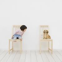 イスに座って犬を見る女の子
