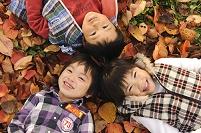 落ち葉の上に寝転ぶ日本人の子供