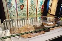 中国 新疆ウイグル自治区博物館 ミイラ