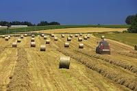 ロール 農作業
