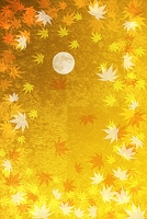 金屏風のモミジと満月