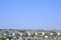 新緑の住宅街と青空