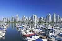 カナダ フォールス・クリークのヨットハーバーとダウンタウン