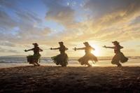 ハワイ フラダンス