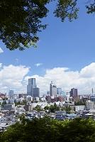 宮城県 仙台市全景