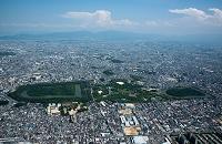 大阪府 百舌鳥古墳群周辺