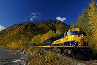 アラスカ アラスカ鉄道