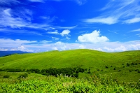 長野県 霧ヶ峰 草原と雲