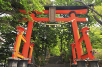 山梨県 富士浅間神社表参道の鳥居